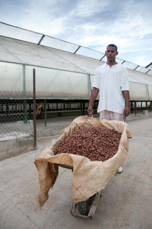 Ein Kakaobauer in der Dominikanischen Republik.  Foto: fairtrade