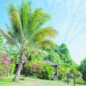 Nationalpark Bunaken