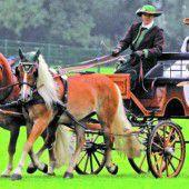Größtes Ponyevent im Vierländereck