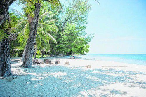 Im weißen Sand, im Schatten der Palmen, lässt es sich aushalten.