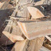 Streit um das richtige Brennholz