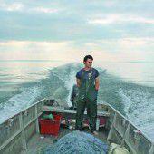 Bodenseefischer vor dem Aus