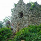 Burgruinen weiter vor dem Zerfall bewahren