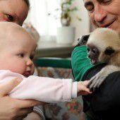Freundschaft unter Babys