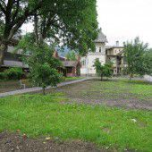 Kalb-Garten gerodet – Neugestaltung geplant