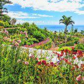 Stille Wanderungen auf Madeira