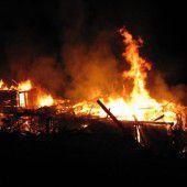 Kälber retteten sich aus brennender Hütte