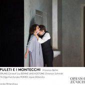 Romeo und Julia aus anderer Sicht