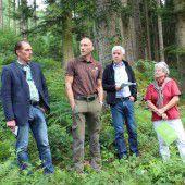 Bedeutung der heimischen Wälder ins Zentrum rücken