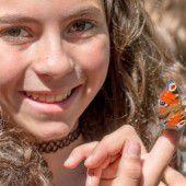 Engagierter Einsatz für bedrohte Schmetterlinge