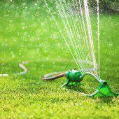 Hitzefrei für den Rasenmäher