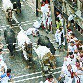 Auch heuer werden wieder Stiere durch Pamplona gehetzt