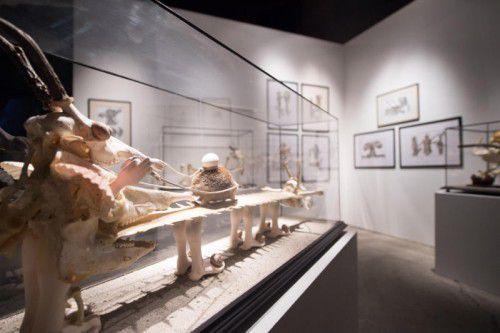 """In der Ausstellung im Kunstraum Dornbirn sind neben vier Kurzfilmen auch Skulpturen und Grafiken zu sehen. Diese zeigen Švankmajers ambitioniertes Projekt einer """"Enzyklopädie der anderen Welt""""."""