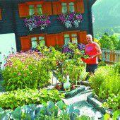 Symphonie aus Blumen und Gemüse