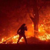 Schwere Waldbrände wüten in Kalifornien