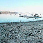 Gespenstischer Mono Lake