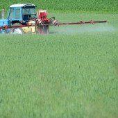 Noch keine Zulassung für kritisiertes Pestizid