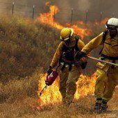 Waldbrände lodern weiter