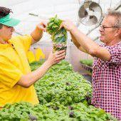 Lehrling zu Besuch beim Bio-Bauern