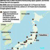 Erstmals seit Fukushima Reaktor hochgefahren