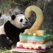 Panda Bao Bao feierte zweiten Geburtstag