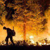 Erfolg im Kampf gegen schwere Waldbrände