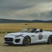 Jaguar auf Expansionskurs