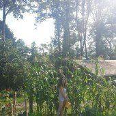 Wenn der Mais im eigenen Garten wächst