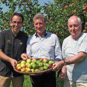 Obstbörse fördert Verwertung von Obst