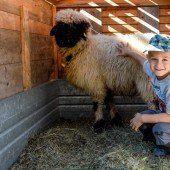 Ein neuer Kuschel-Liebling für den fünfjährigen Tobias