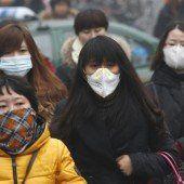 3,3 Millionen Tote durch Luftverschmutzung