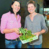 Grüne Kosmetik aus Küche und Garten