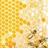 Bienenleben