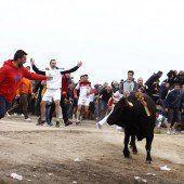 Spanien veranstaltet traditionelle Stierhatz