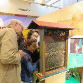 Die Bühne für die Bienen