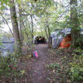Illegale Bewohner in Nenzinger Wald