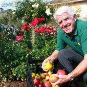 Wenn Arbeit Früchte trägt