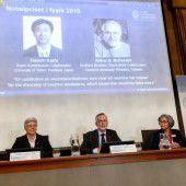 Physik-Nobelpreis geht an Teilchenforscher