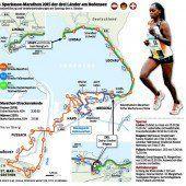 Das Laufsportspektakel in Zahlen