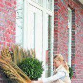 Richtiger Winterschutz für die Kübelpflanzen