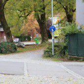 Verkehrsberuhigung statt Zebrastreifens