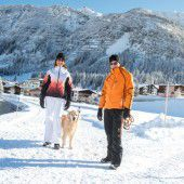 Schneezeugnis für Arlberg