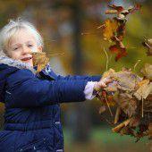 Der goldene Herbst kommt voll in Fahrt