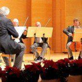 Wiener Streichersolisten