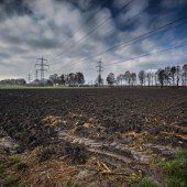 Rhesi und die Landwirtschaft