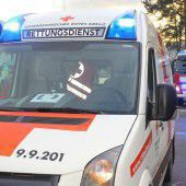 Kutsche kippt um: Fünf Verletzte in Koblach