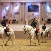 Levade, Kapriole und Courbette sind nun Kulturerbe: Spanische Hofreitschule prämiert