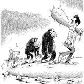 Blaue Evolutionstheorie!