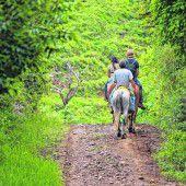 Ausritte mit dem Pferd
