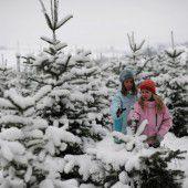 Österreicher wünschen sich weiße Weihnachten